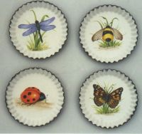 Insect Coasters